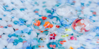 JR東海キャンペーン企画【花と水の京都】レインアート制作の画像