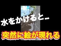 【レインアート】濡れると見えるSNS映え新感覚おすすめフォトジェニックアート動画アップの画像