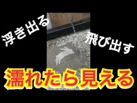【レインアート】インスタ映え必須の新感覚フォトジェニックアート動画アップの画像
